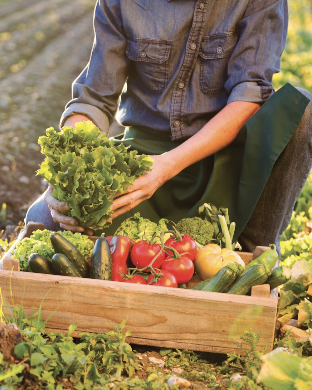 The Local Food Movement